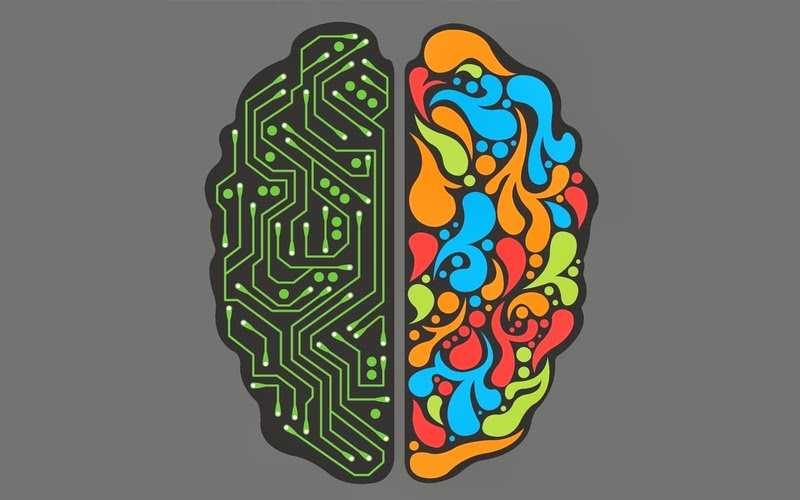 تفقویت نیمکره های مغز